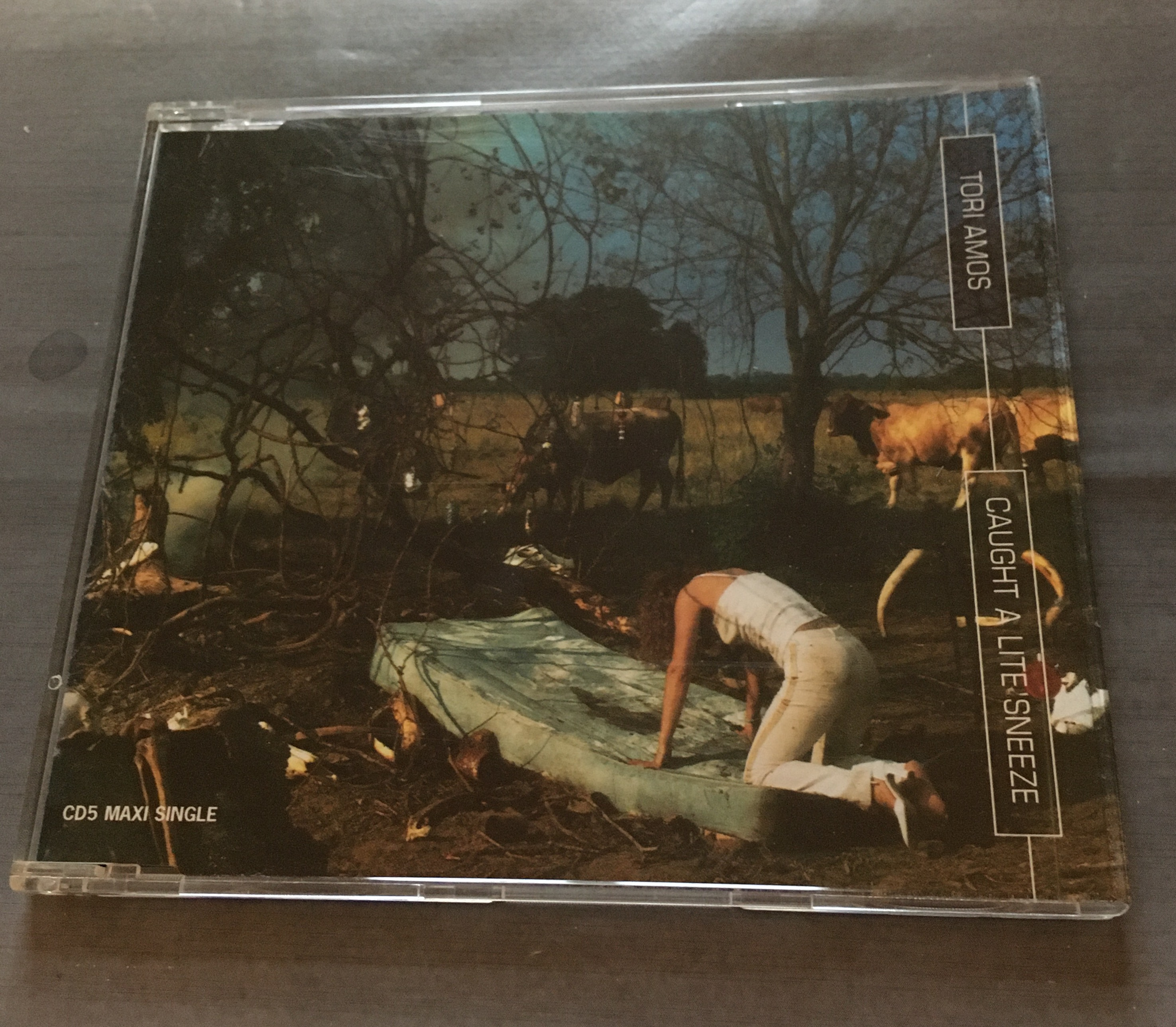 CD Tori Amos - Caught A Lie Sneeze kostenlos