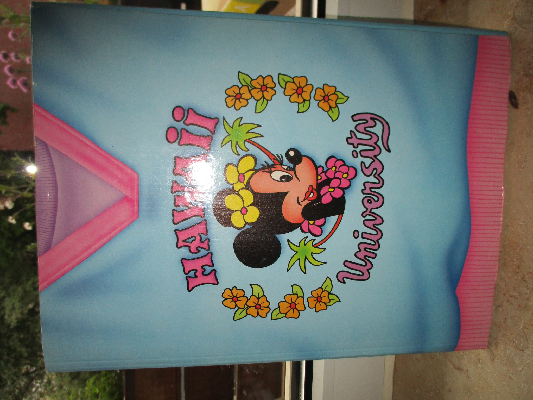 Mappe Minnie Mouse kostenlos