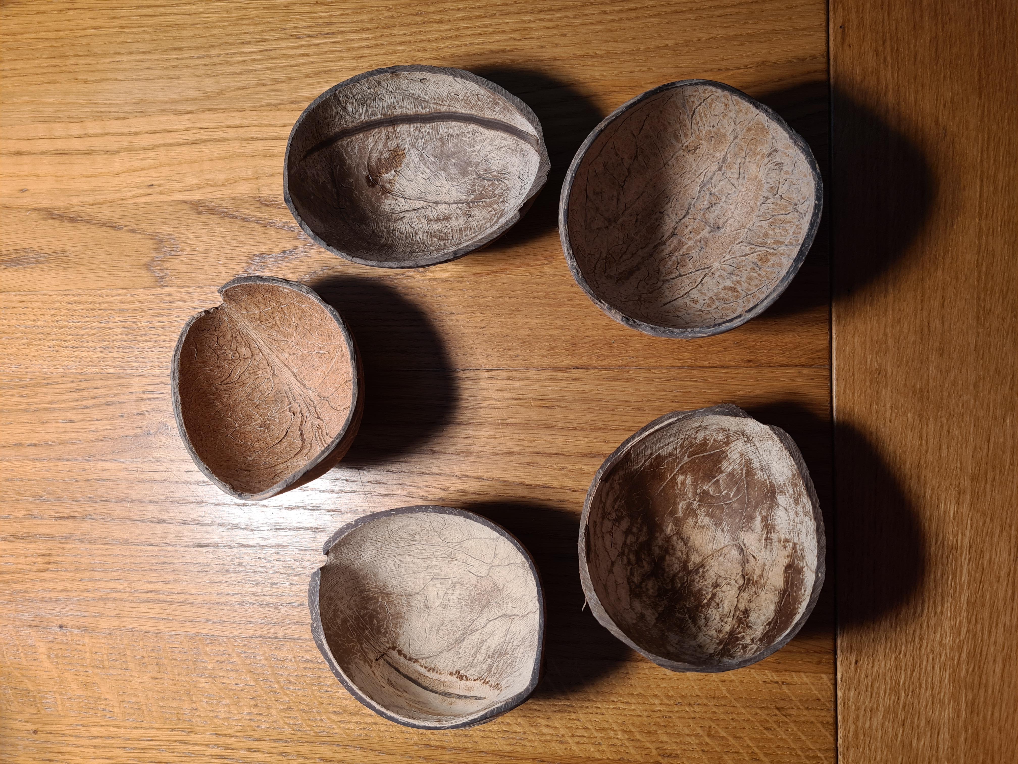 5 Kokosnusshälften  kostenlos